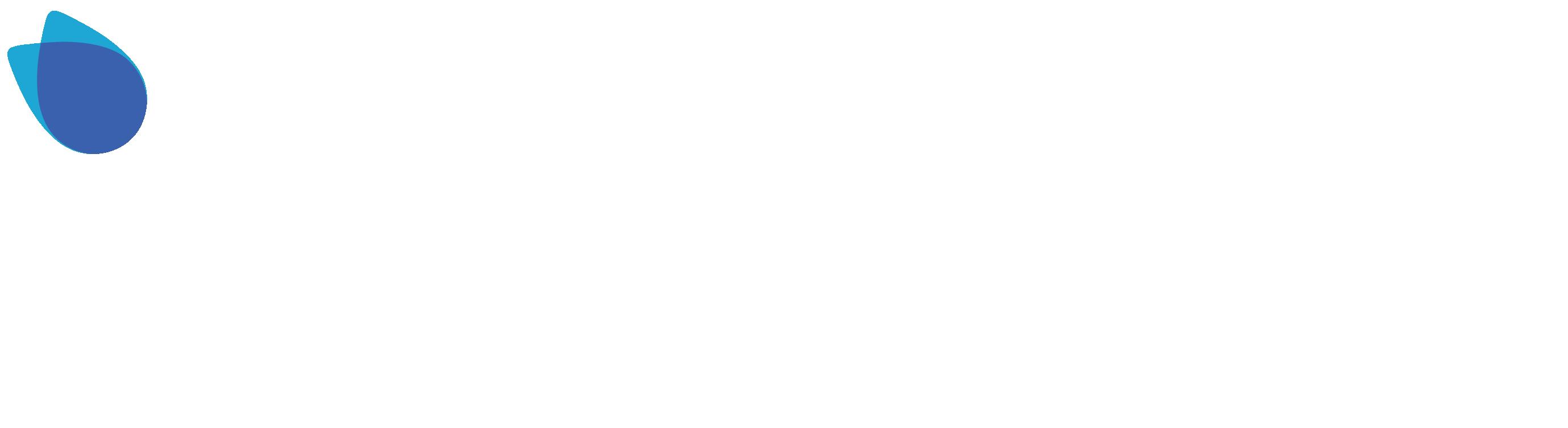Curiousfly